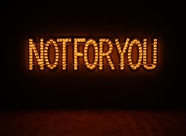 Monica_Bonvicini_NOT_FOR_YOU__2006