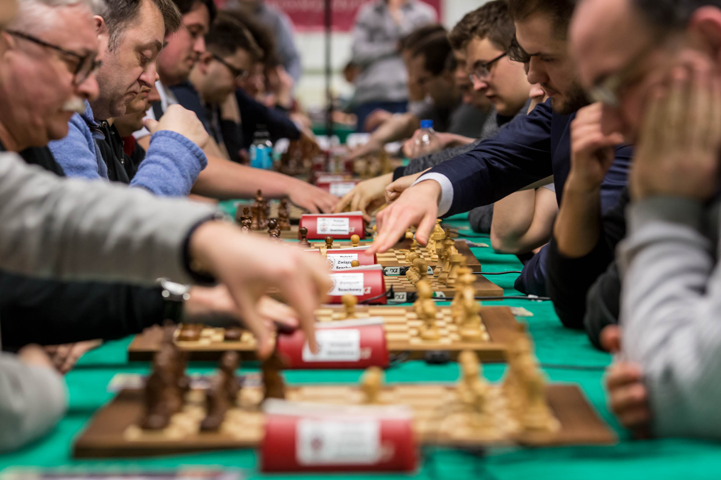 szachy-dk-2336