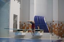 Grand Prix Polski skoków do wody