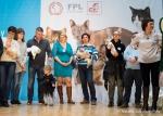 Światowy Dzień Kota w Galerii Łódzkiej